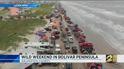 Wild Weekend in Bolivar Peninsula