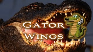 Grilled Alligator Wings!!!! Tasty Tuesday 29