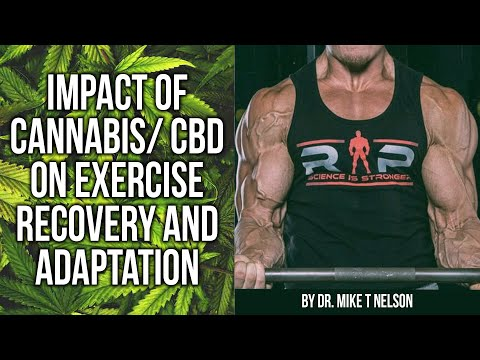 The Effect Of Cannabis and CBD on Exercise Performance and