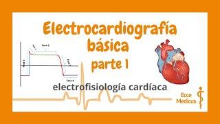 Electrocardiografía básica: 1 - electrofisiología cardíaca.