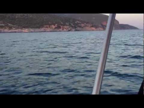 POSEIDON 470 VIDEO 2