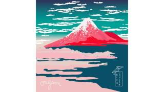 Bleu Toucan - Le vol du cygne