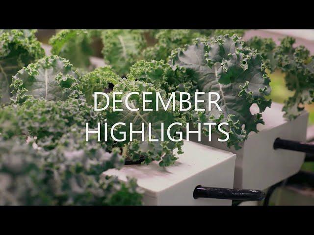 December 2020 Highlights