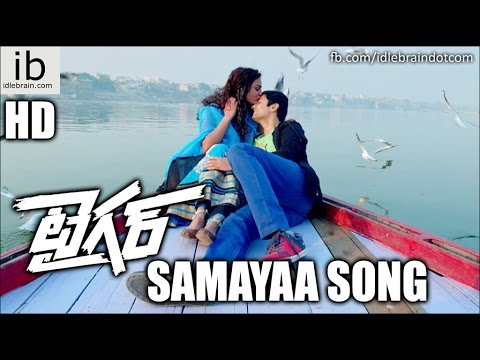 Sundeep Kishan's Tiger Samayaa song - idlebrain.com