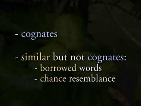 Historical Linguistics; Cognates, Borrowed Words & Chance Resemblance 2