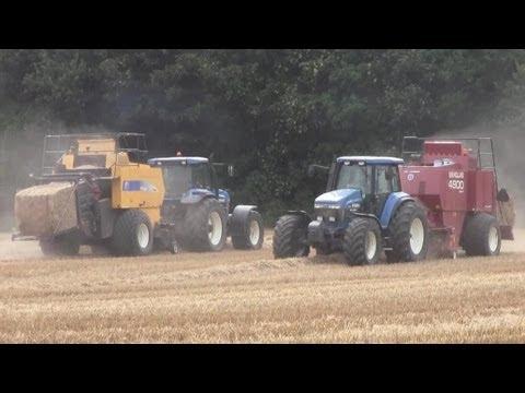 Harvest 2010: Big