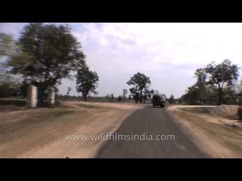 Road trip from Kanha to Jabalpur, Madhya Pradesh