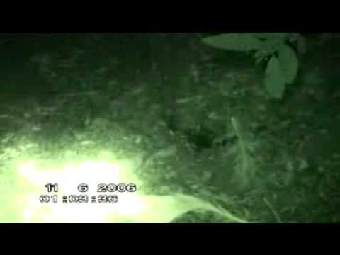 paranormal espagne