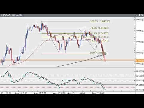 Forex Technical Update 8/17/2010 - Mixed USD Trading; Euro Firms while Pound Slides