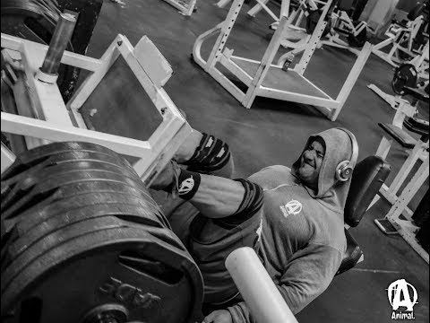 Frank McGrath's Leg Day at Powerhouse Gym in Staten Island, NY