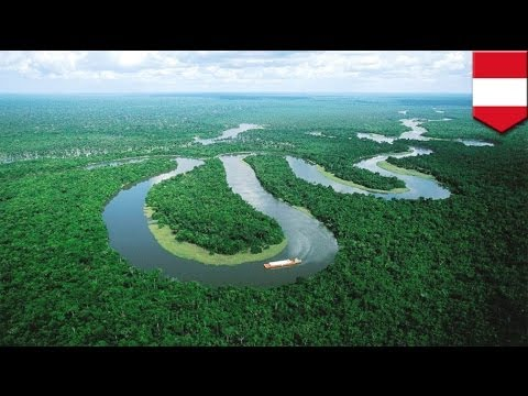 Amazon river shipwreck: search for missing undergoing