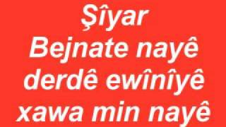 Şîyar Bejnate nayê Resimi