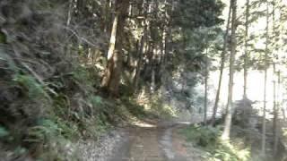 【Michipedia】名古屋坂/樫迫隧道