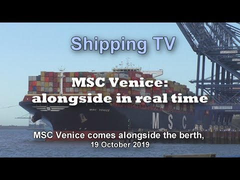 MSC Venice berths in real time; 19 October 2019
