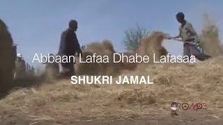 Shukri Jamal - Abbaan lafaa dhabe lafasaa (Oromo Music 2014 New)