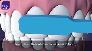How to Brush Your Teeth Animation MCM