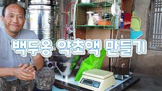 [농사] 백두옹 약초액 만들기 (대형전기포트사용)