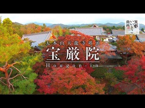 宝厳院 Hougon-in / 紅葉 空撮 / 京都いいとこ動画
