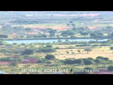 Cidades da Bahia - Palmas de Monte Alto