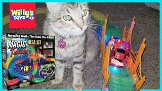 Magic Tracks MEGA SET Toy Review 18Ft Speedway Glow Track vs. Maine Coon Cat - Willy
