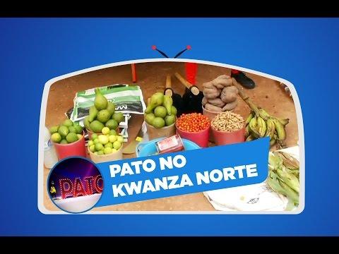 PATO | KWANZA NORTE