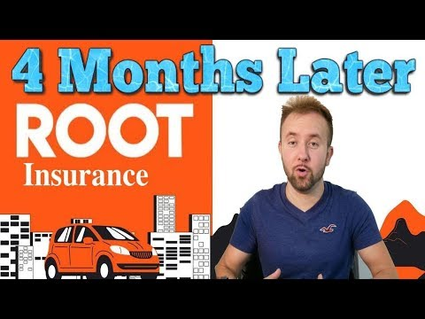 The Best Car Insurance Company In The USA – 4 Months Later Update