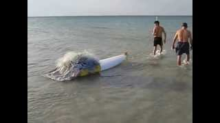 Тунис, рыбаки. #гидШадринАндрей