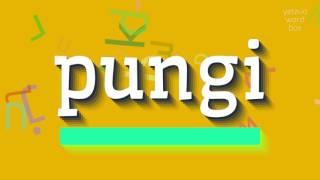 Download lagu How to saypungi MP3