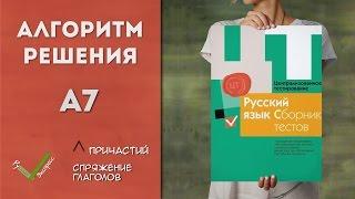 Видеоразбор ЦТ по Русскому [А7 | 2015]