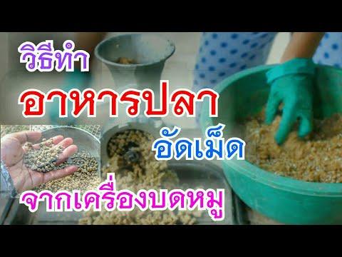 ทำอาหารปลา แบบเม็ด   จากเครื่องบดหมู (DIY fish food )