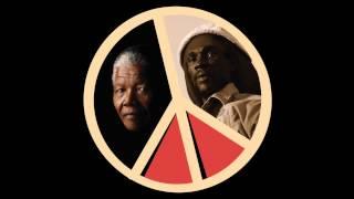 Nelson Mandela Day in Denver 2015