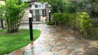 かい父の実家での雨宿り中♪ 父さんを見つけて一目散のかい(北海道犬)...