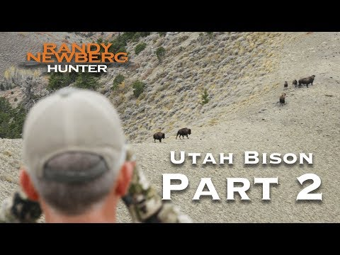 2018 Utah Archery Bison with Randy Newberg (Part 2)