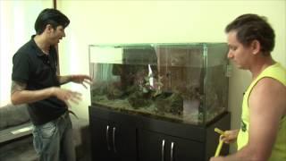 Help Reef na sua casa.