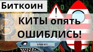 Биткоин КИТЫ опять ОШИБЛИСЬ и Перемещение 47000 BTC из 2017