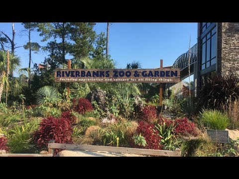 Riverbanks Zoo Tour and Overview 2017 | Columbia, SC | 4K