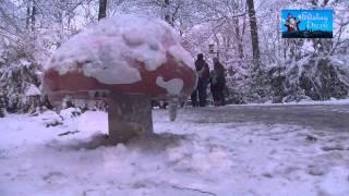 Winter Efteling - Sprookjesbos
