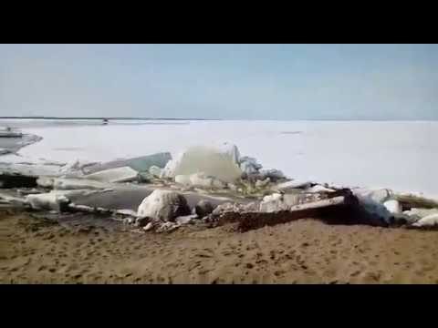 Ледоход в Дудинке -5 июня 2017 год
