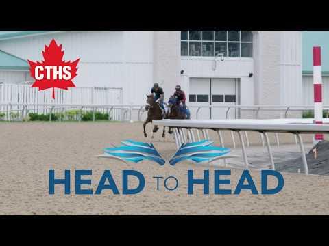 Talkin Horse Racing - Episode 7 -  Head to Head