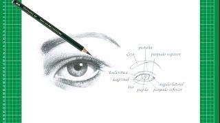 """Nuevo CURSO de dibujo a lápiz Cap. 6 """"El ojo de frente"""""""
