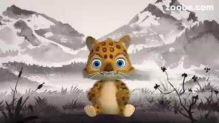 Zoobee: all'attacco con i video!