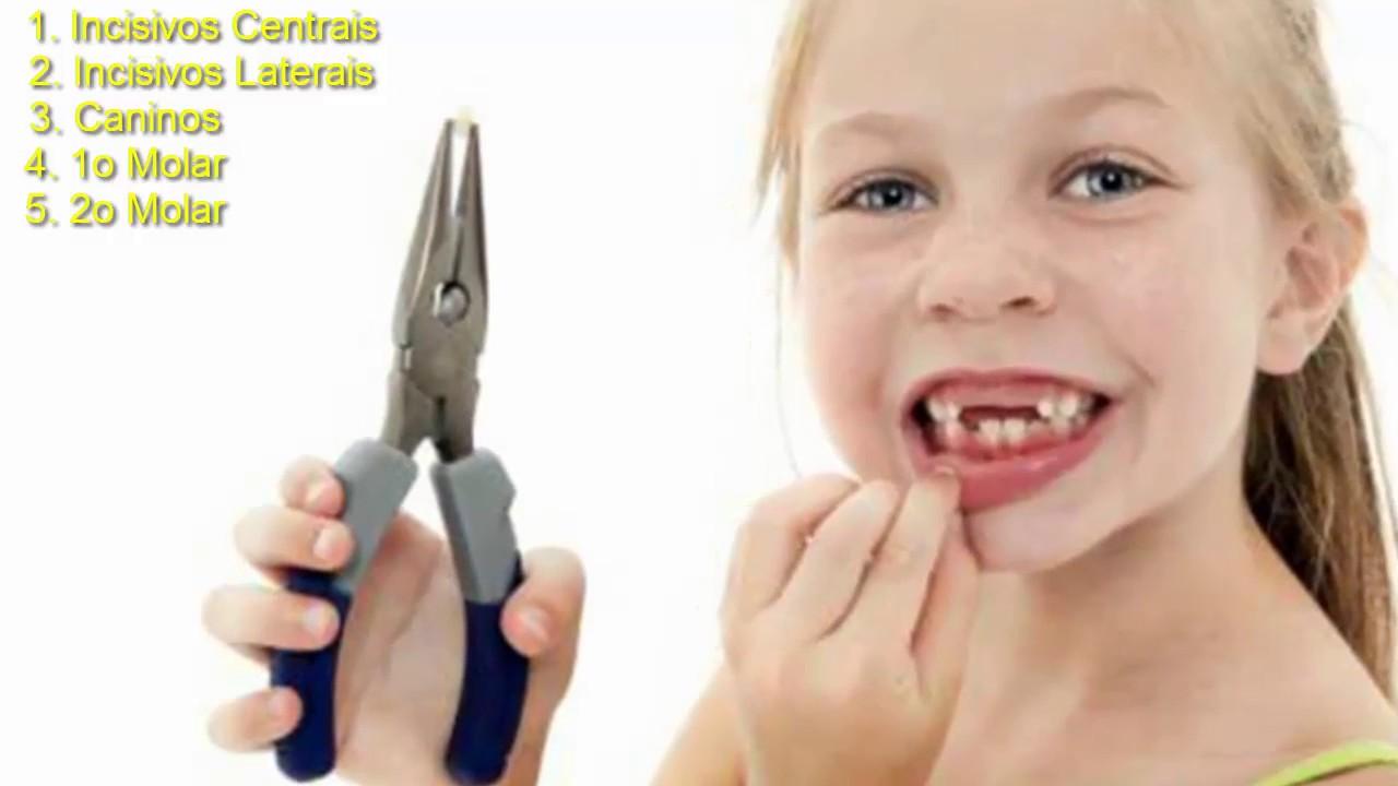 Com Quantos Anos Começam A Cair Os Dentes De Leite