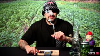 Strain Review w/ Dr. Greenthumb  - White Fire | BREAL.TV
