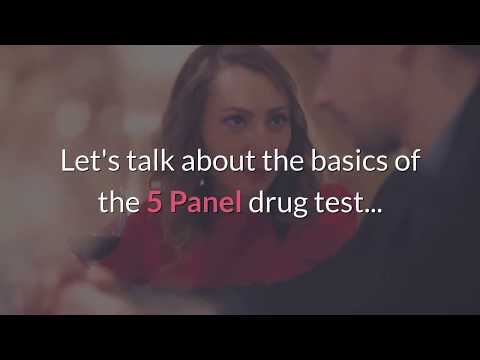 5 Panel Drug Tests - All You Need To Know