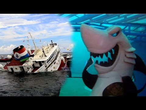Lady Luck Wreck | Sinking & Diving | Pompano Beach Florida