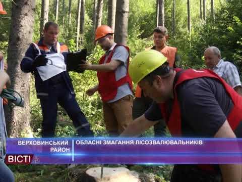 Обласні змагання лісозвалювальників