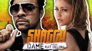 Shaggy - Dame feat Kat Deluna (Official Audio) HD