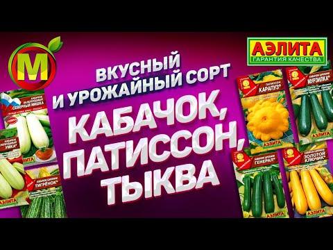Как отличить кабачок от тыквы по плодам