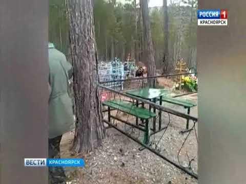 В Дивногорске на местное кладбище вышел медведь