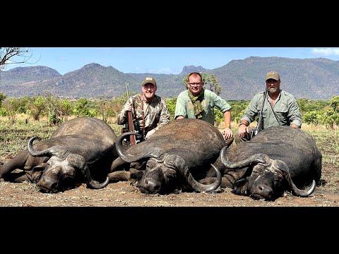 Uganda Buffalo & Plainsgame Hunt 2021 Tim Herald/Jay Cohea Worldwide Trophy Adventures